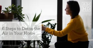 6 Steps To Detox and Purify The Air In Your Home
