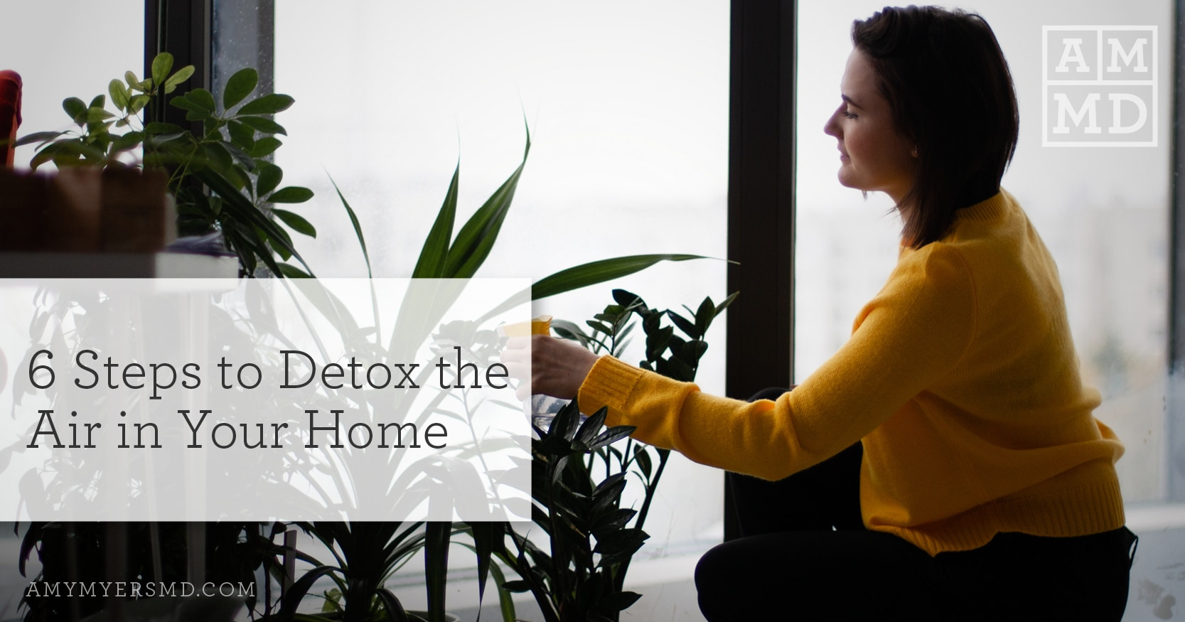 6 Steps To Detox and Purify The Air In Your Home - A Woman Watering Her Plants - Featured Image - Amy Myers MD