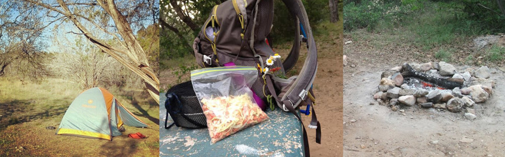 A Tent, Pack, and Campfire Ring - Amy Myers MD