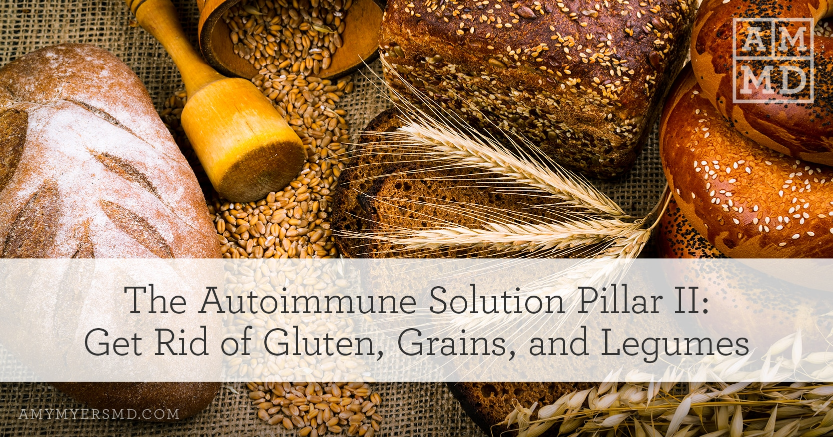 The Autoimmune Solution Pillar II: Get Rid of Gluten, Grains, and Legumes - Breads and Grain - Featured Image - Amy Myers MD