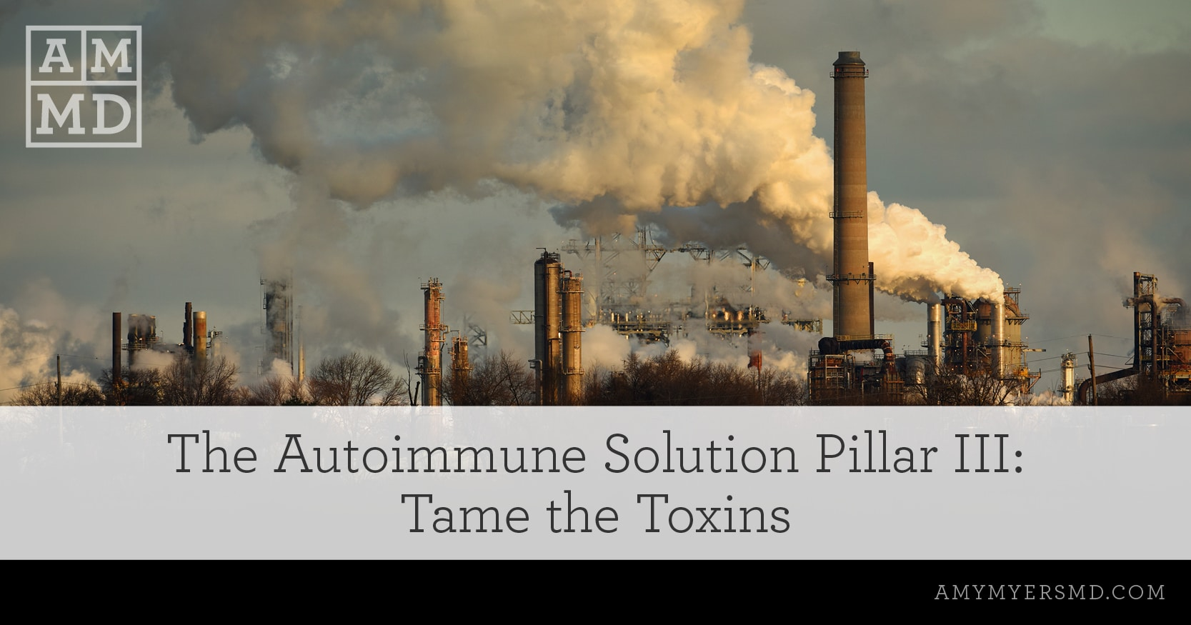 The Autoimmune Solution Pillar III: Tame the Toxins - A Power Plant - Featured Image - Amy Myers MD