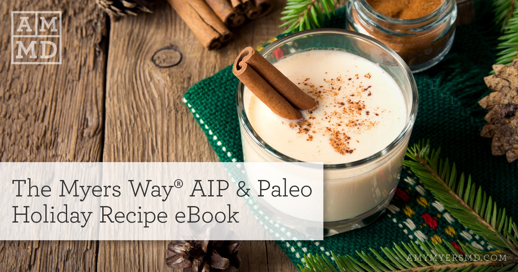 The Myers Way® AIP & Paleo Holiday Recipe eBook - Egg Nog with Cinnamon - Featured Image - Amy Myers MD