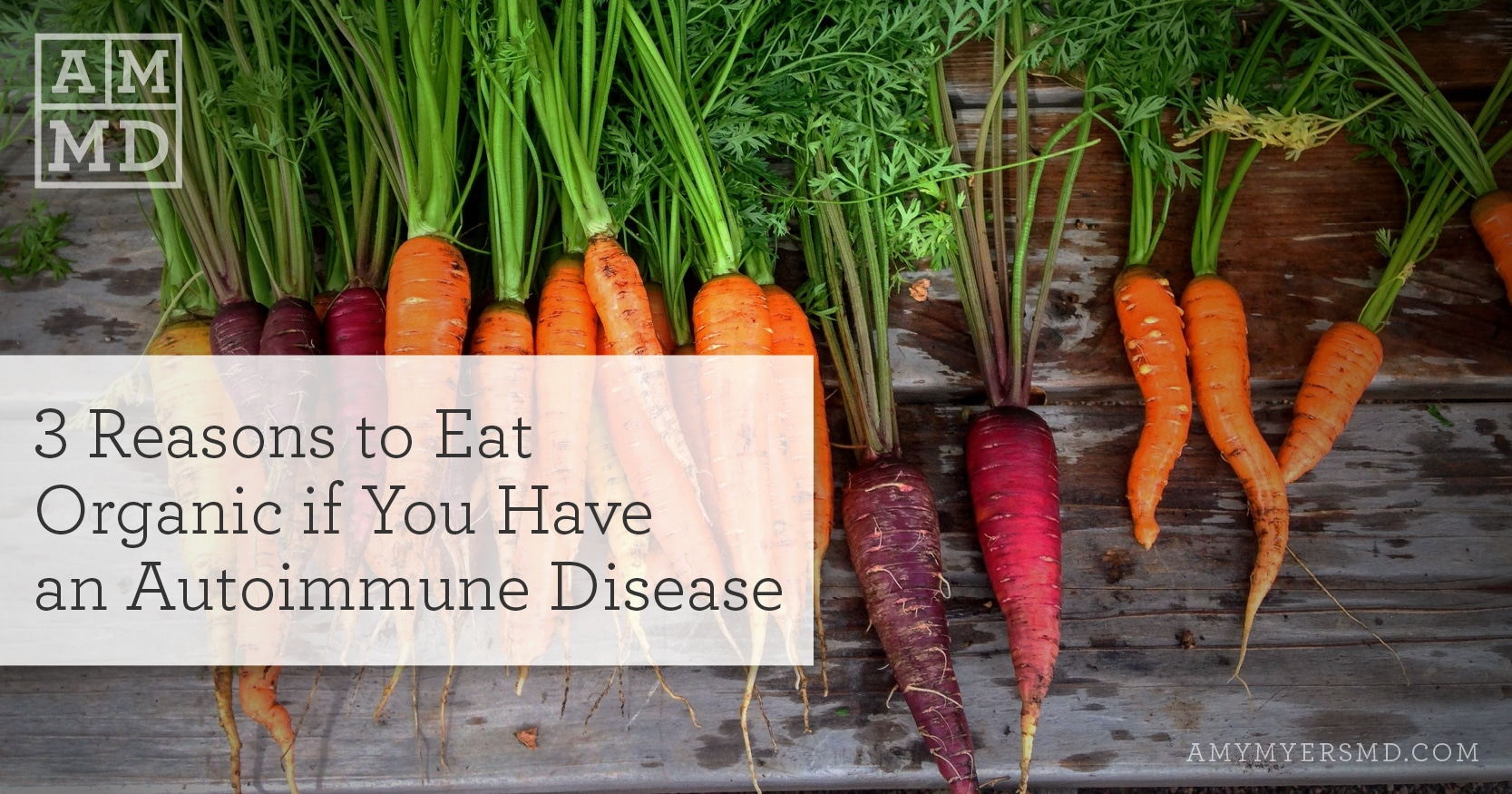 3 Reasons to Eat Organic If You Have an Autoimmune Disease - Carrots - Featured Image - Amy Myers MD