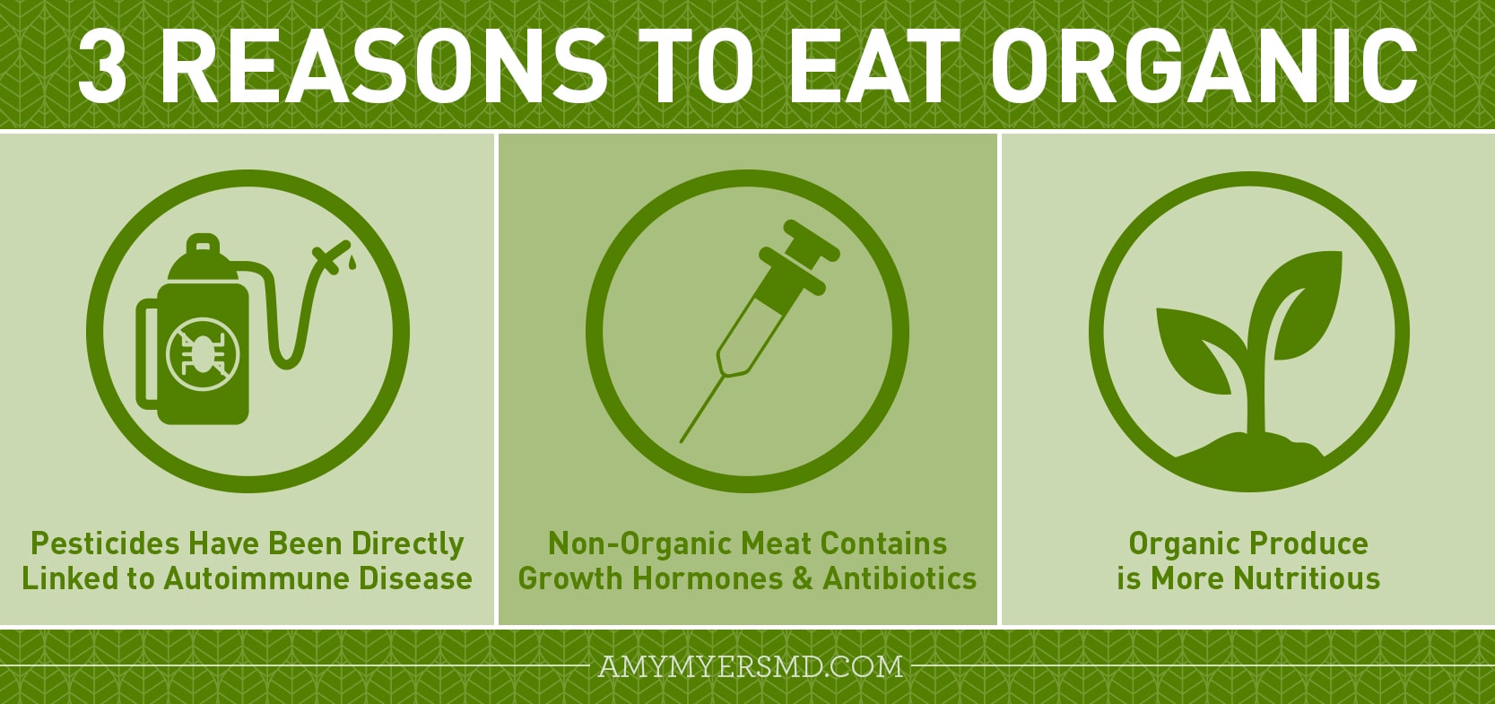 3 Reasons to Eat Organic - Infographic - Amy Myers MD