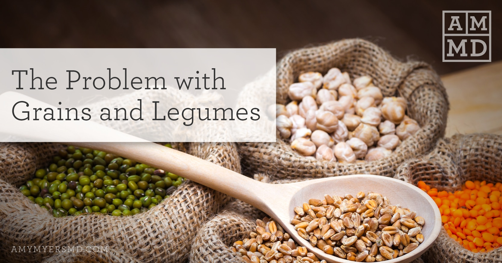 The Problem with Grains and Legumes - Featured Image - Amy Myers MD