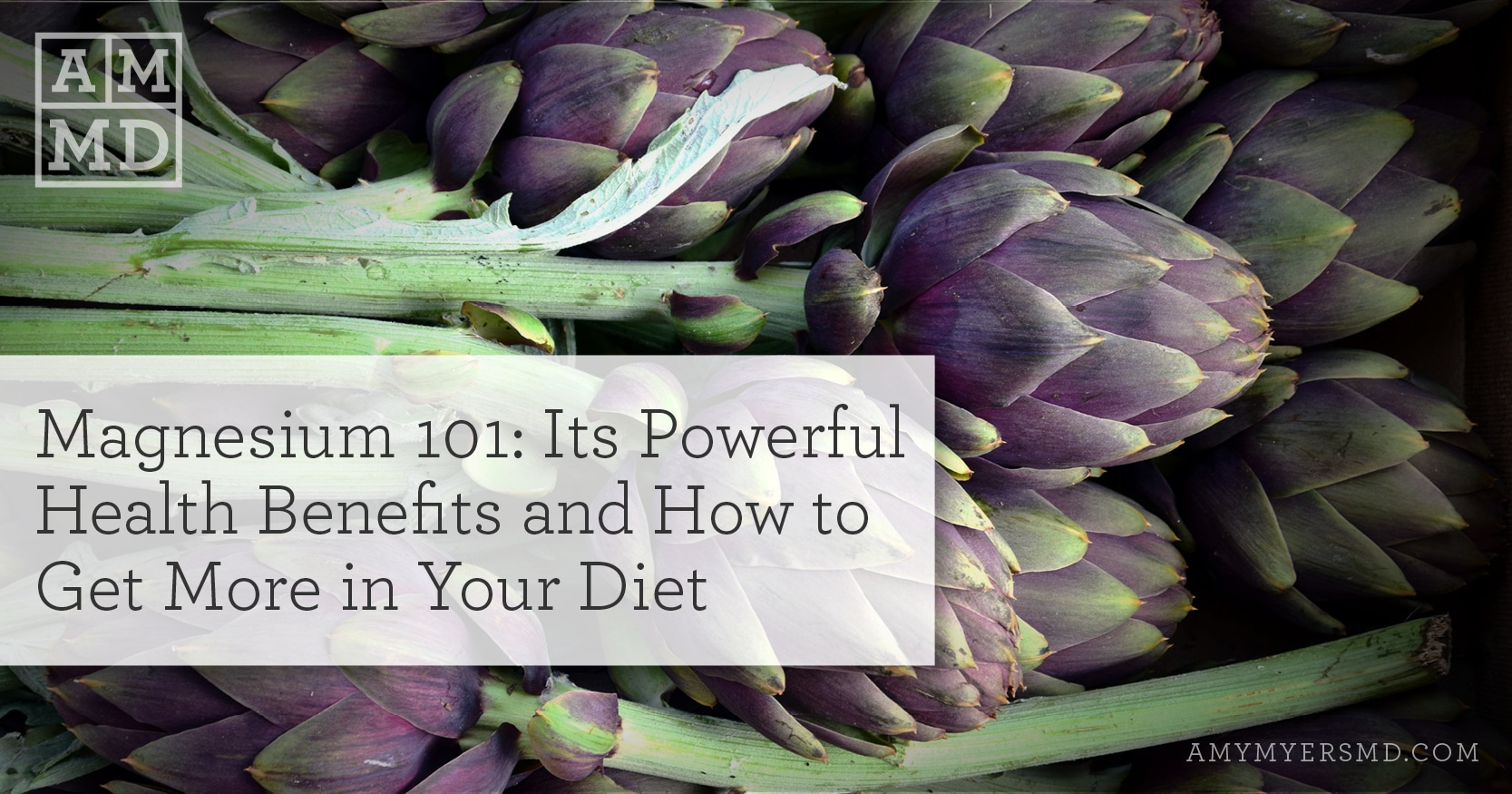 Magnesium Supplements - Powerful Health Benefits and How to Get More in Your Diet - Artichokes - Featured Image - Amy Myers MD
