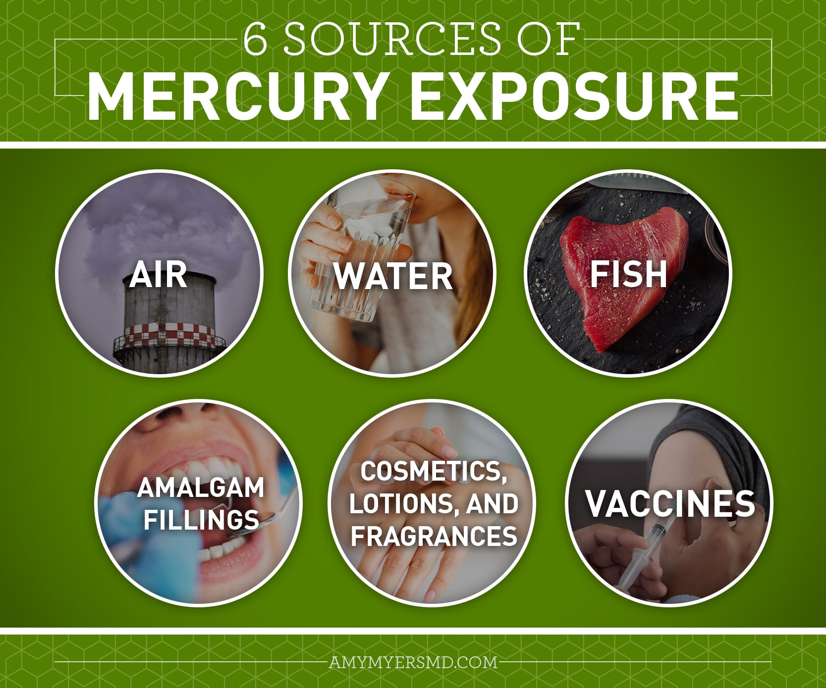 6 Sources of Mercury Exposure - Infographic - Amy Myers MD