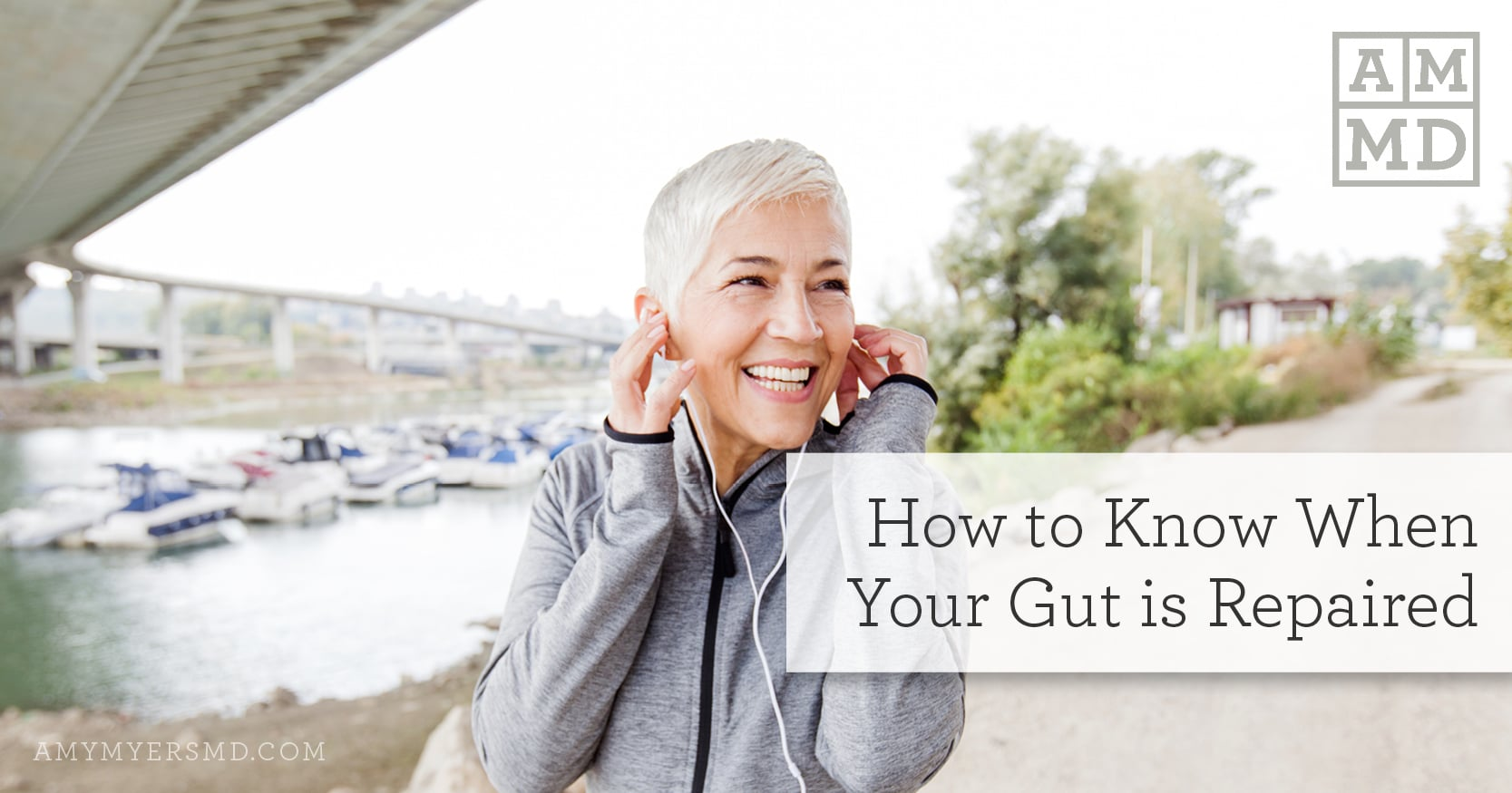 know when your gut is repaired