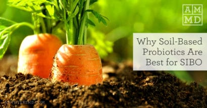 Why Soil-Based Probiotics Are Best for SIBO