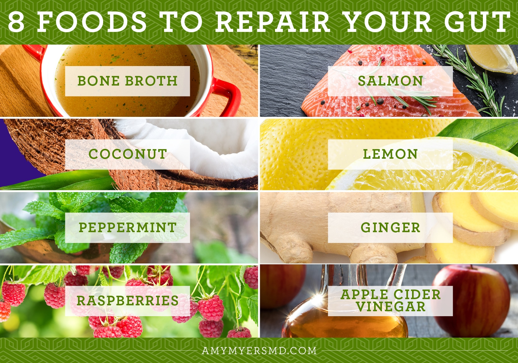 8 Foods to Repair Your Gut - Infographic - Amy Myers MD