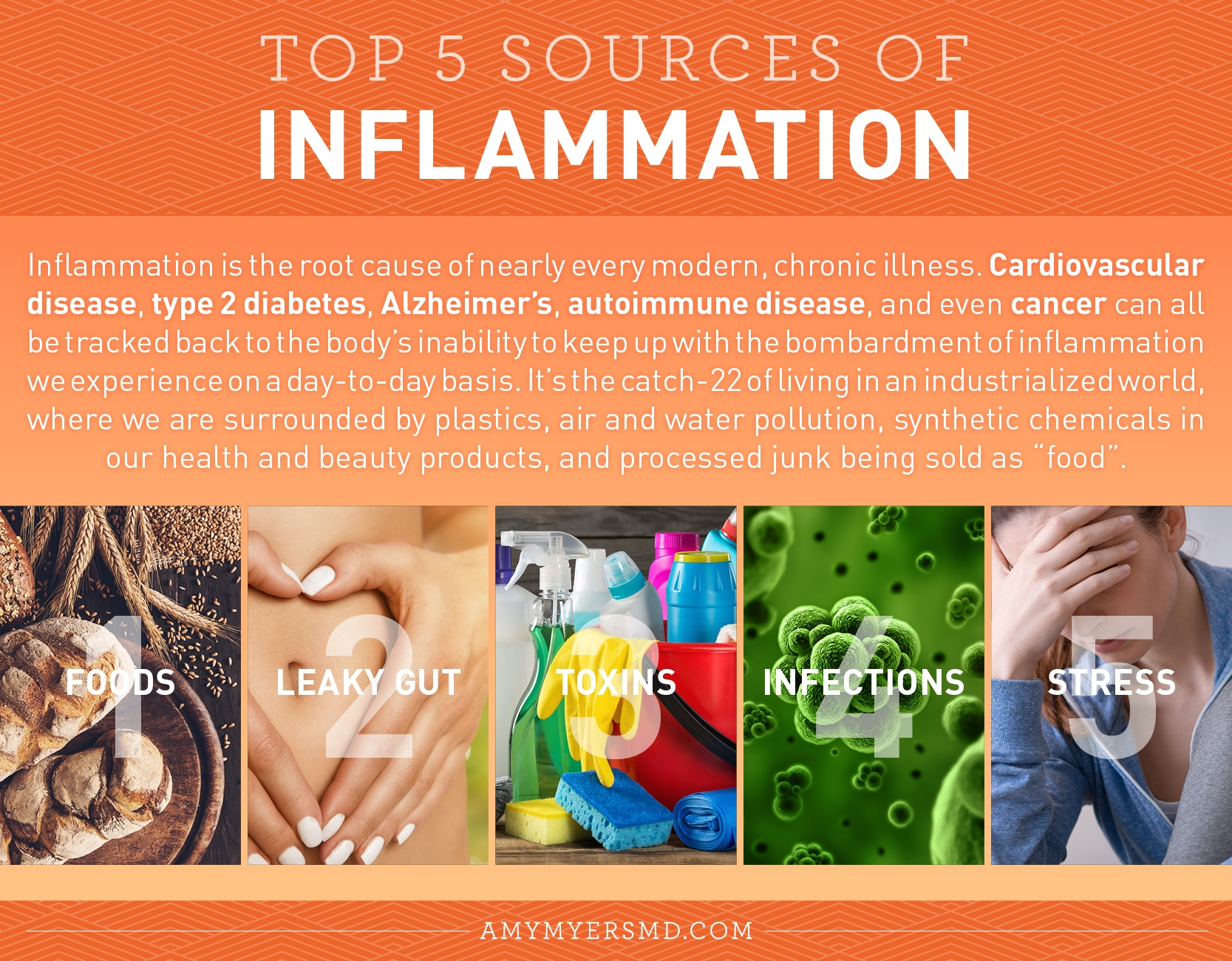 Top 5 Sources of inflammation - Infographic - Amy Myers MD