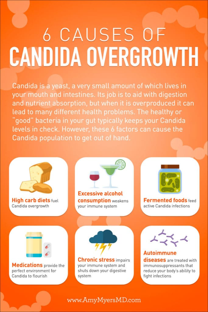 Incredible 10 Signs You Have Candida Overgrowth How To Eliminate It Customarchery Wood Chair Design Ideas Customarcherynet