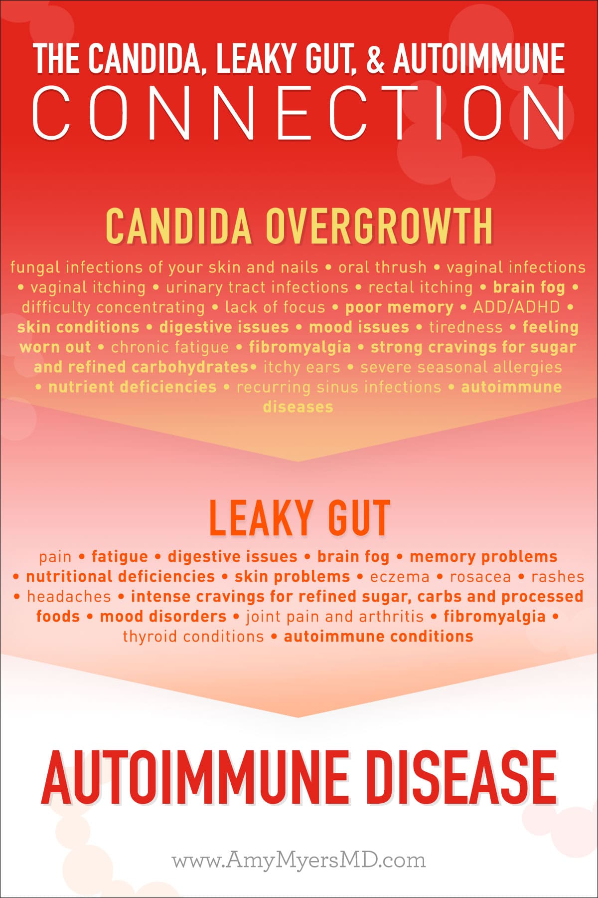 Infographic_the Candida Autoimmune Connection