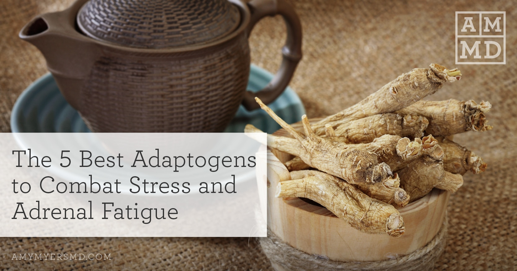 Best Adaptogens to Combat Stress and Adrenal Fatigue - Featured Image - Amy Myers MD