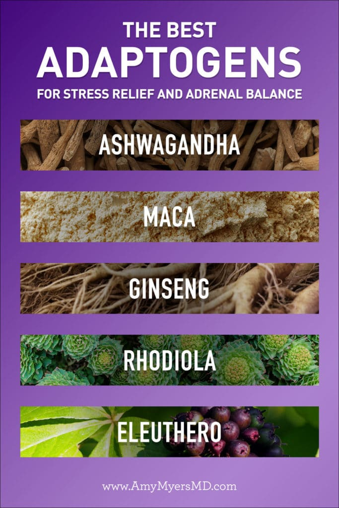 best adaptogens for stress relief and adrenal balance