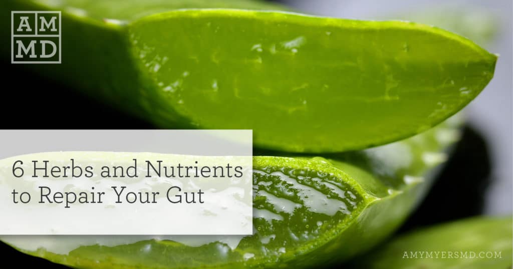 Repair Your Gut with 6 Herbs and Nutrients