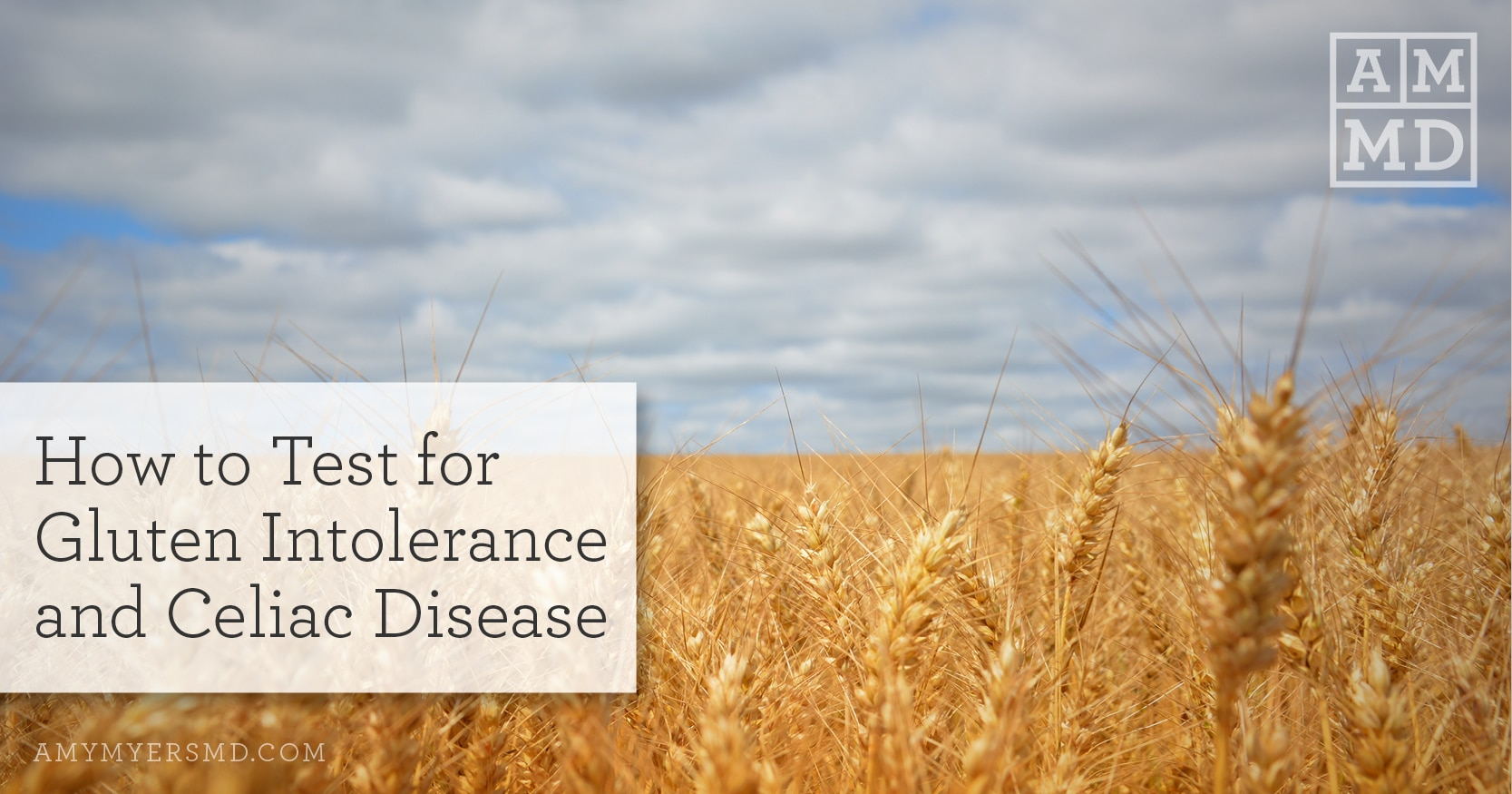 How to Test for Gluten Intolerance and Celiac Disease - Amy