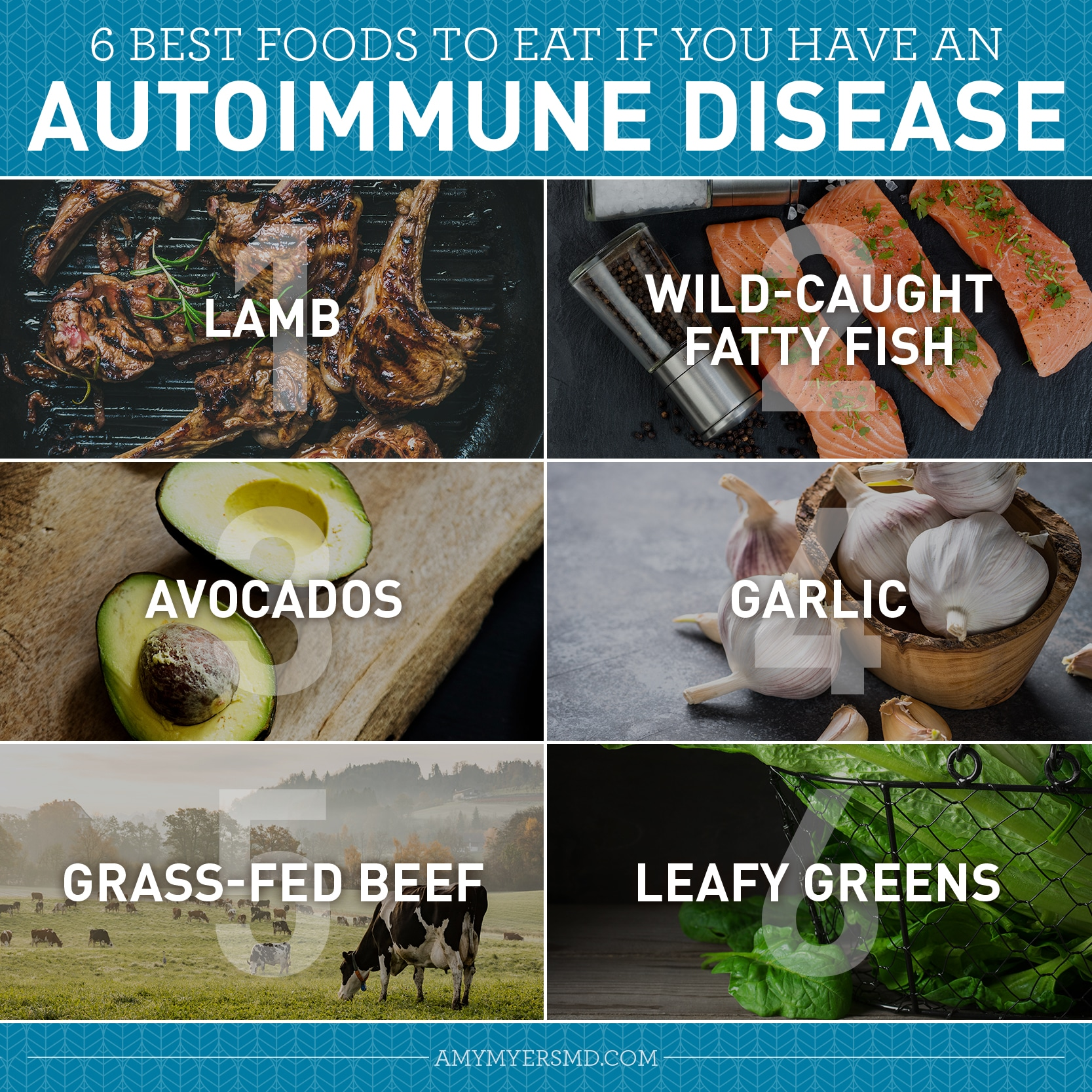 List of the 6 Best Foods to Eat if You Have an Autoimmune Disease - Infographic - Amy Myers MD