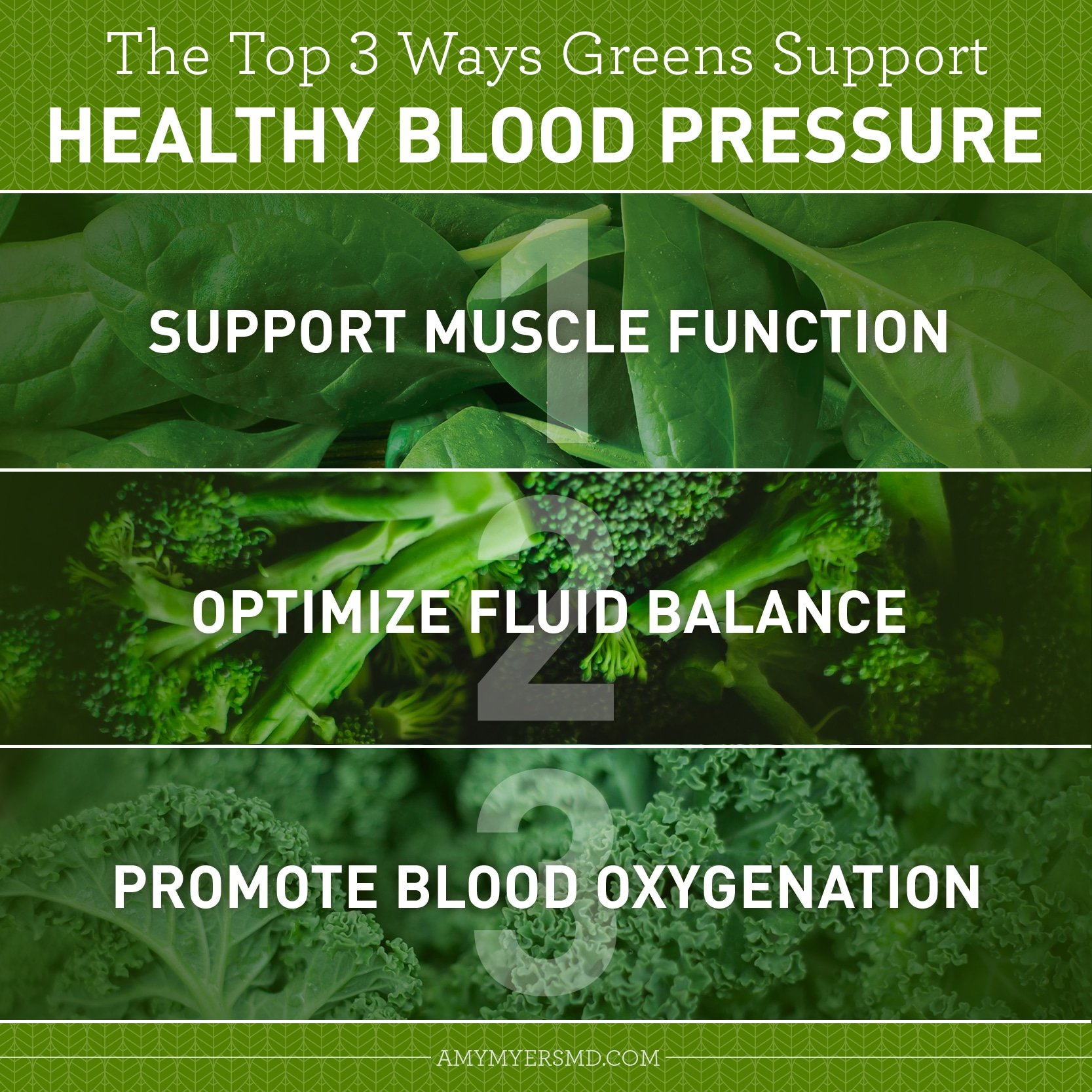 3 Ways Greens Support Healthy Blood Pressure - Infographic - Amy Myers MD