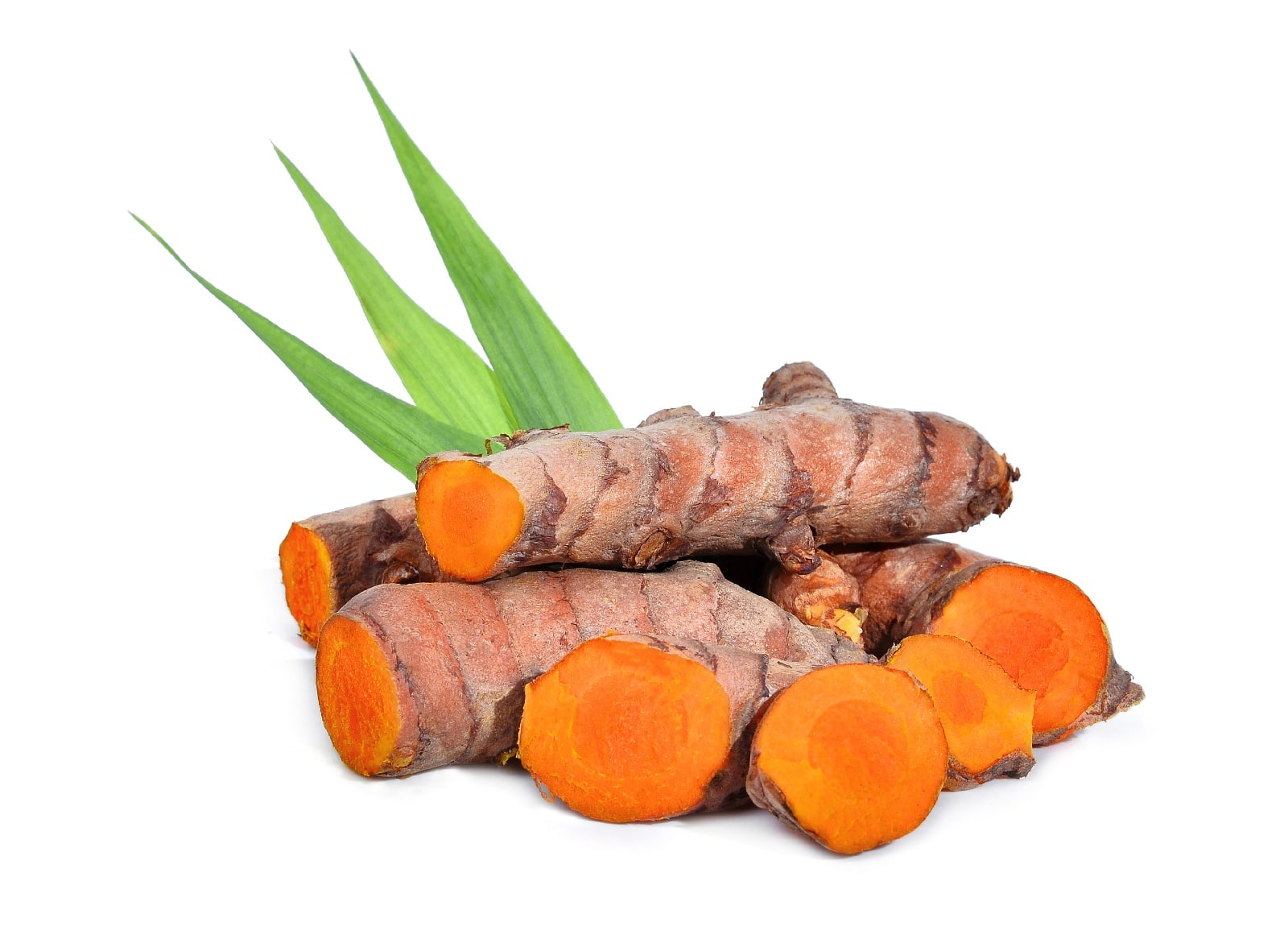 Fresh cut turmeric root on a white background