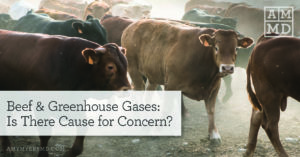 Beef & Greenhouse Gases: Is There Cause for Concern?