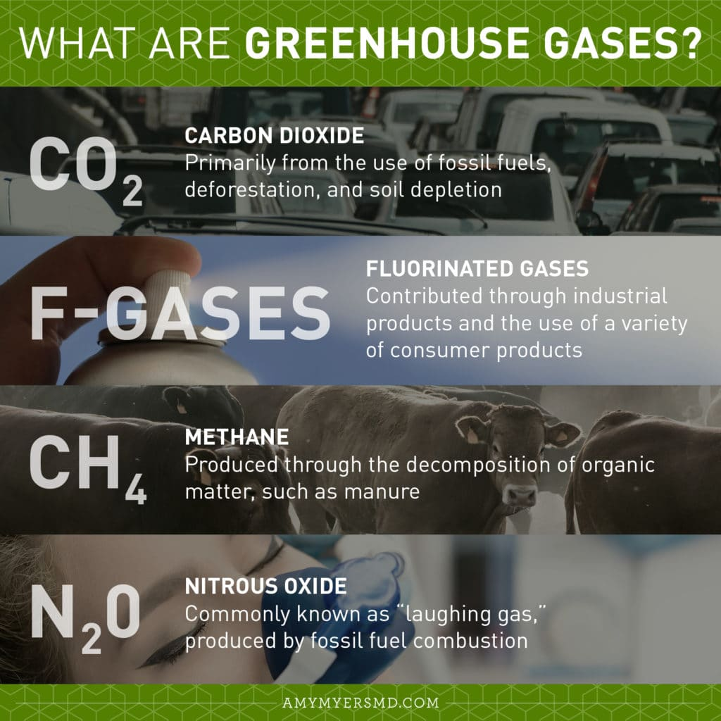 What are Greenhouse Gases? - Infographic - Amy Myers MD