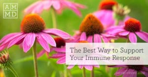 The Best Way to Support Your Immune Response