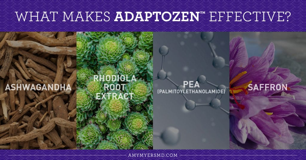 What Makes AdaptoZen™ so Effective? - Infographic - Amy Myers MD®