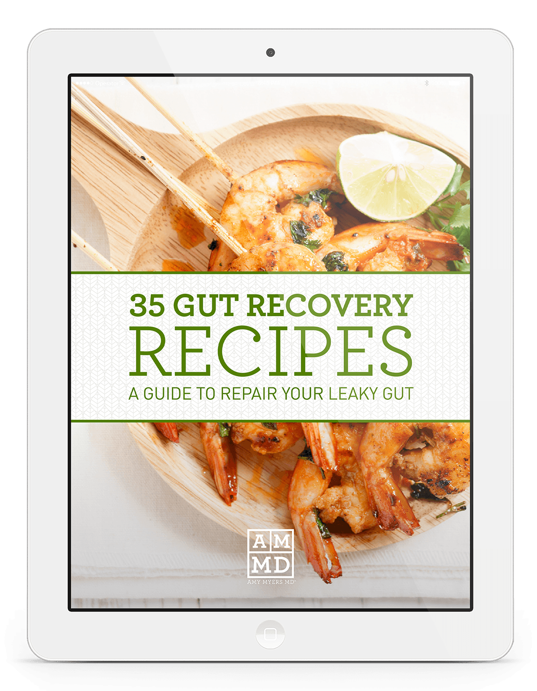 35 Gut Recovery Recipes eBook Cover