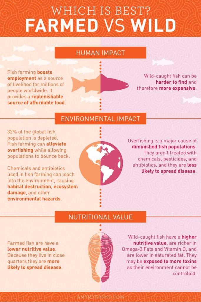 What are the Pros and Cons of Farm-Raised Fish and Wild-Caught Fish? - Infographic - Amy Myers MD®