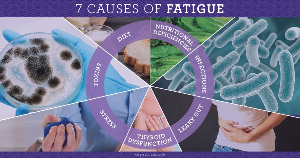 7 Causes Of Fatigue - Infographics - Amy Myers MD®