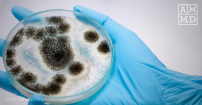 Mycotoxin Poisoning: Symptoms and Solutions for Toxic Mold