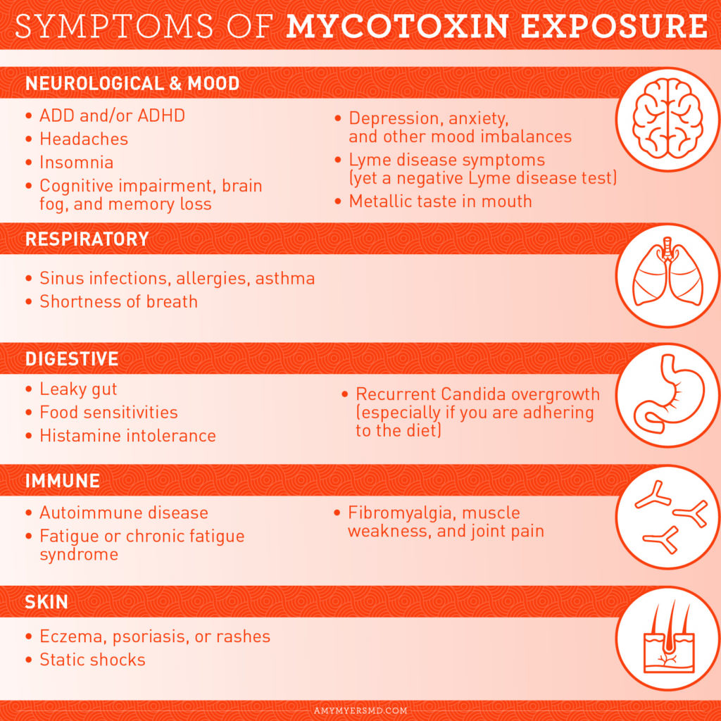 Symptoms of Mycotoxin Exposure - Infographic - Amy Myers MD®