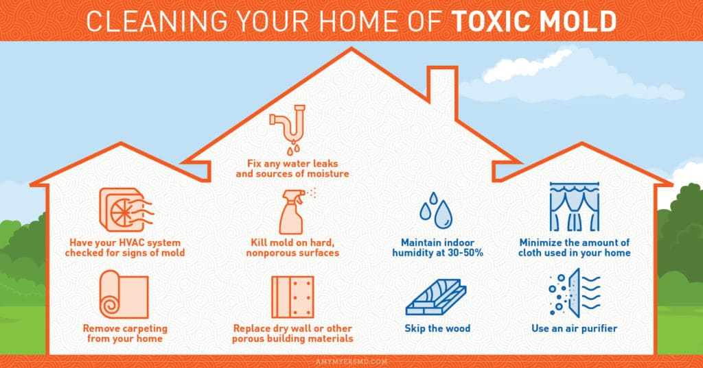 Cleaning Your Home of Toxic Mold - Infographic - Amy Myers MD®