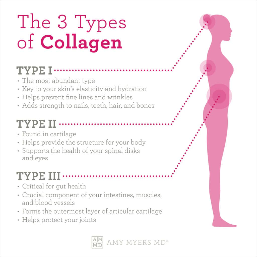 3 Types of Collagen - Infographic - Amy Myers MD®