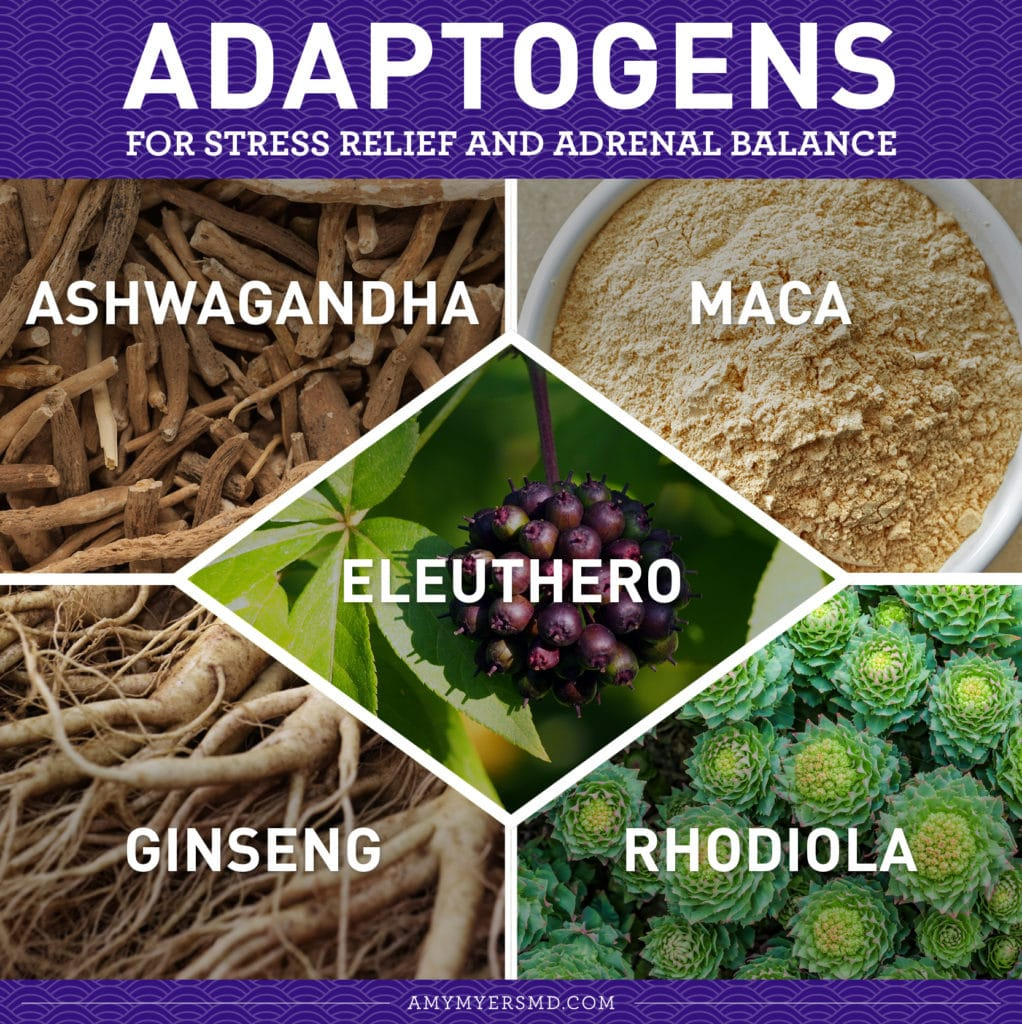 Adaptogens for Stress Relief and Adrenal Balance - Infographic - Amy Myers MD®