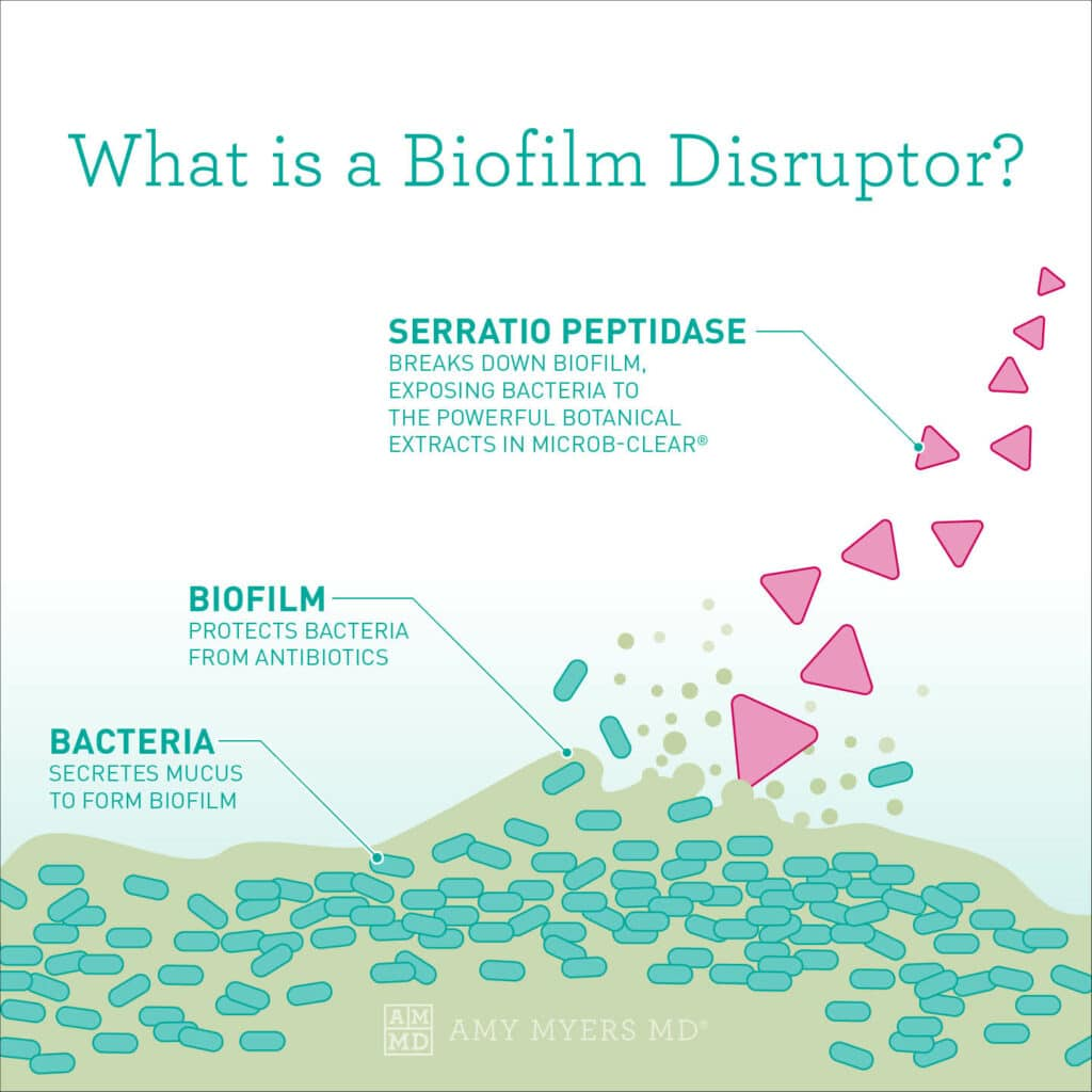What Is A Biofilm Disruptor? - Infographic showing how a Biofilm Disruptor works - Amy Myers MD®