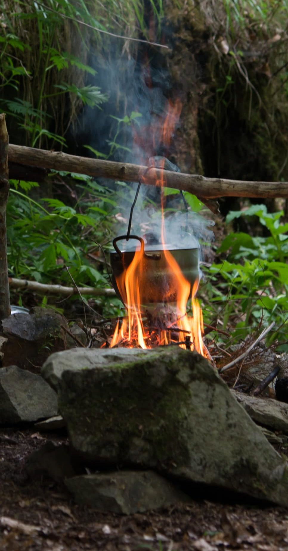 Camping kettle over burning campfire, Carpathian forest