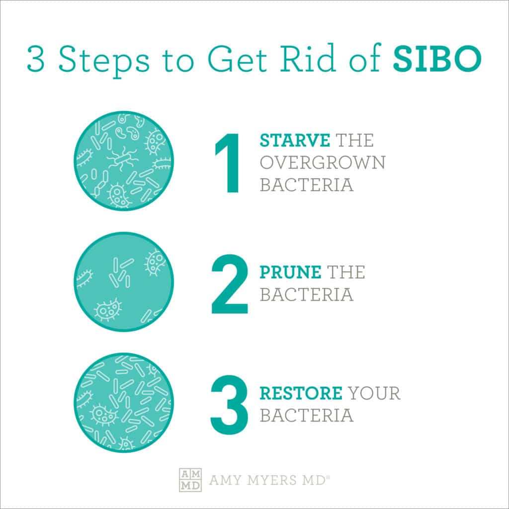 3 Steps To Get Rid Of SIBO - Infographic - Amy Myers MD®