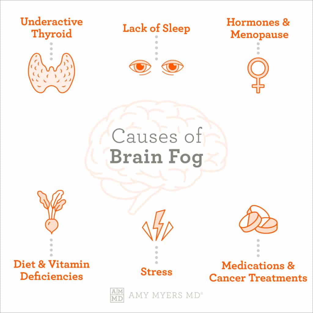 The Causes of Brain Fog - Infographic - Amy Myers MD®