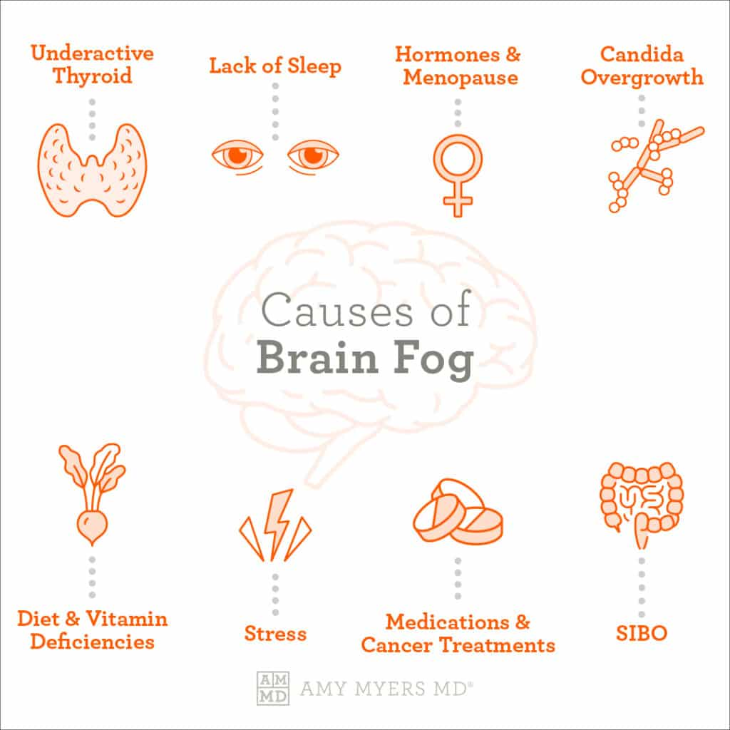 The Causes of Brian Fog - Infographic - Amy Myers MD®