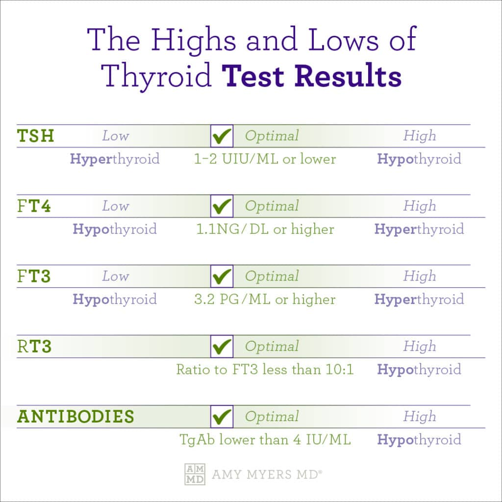 The Highs and Lows of Thyroid Test Results - Infographic - Amy Myers MD®