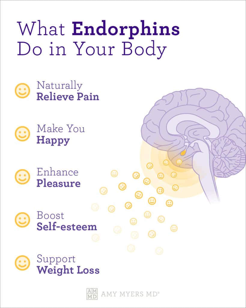What are endorphins?