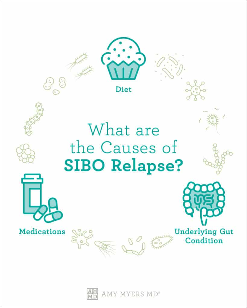 What are The Causes of SIBO Relapse? - Infographic - Amy Myers MD®